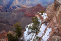 Snow at Mather Point print