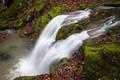 Twin Falls and Moss print