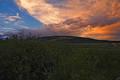 Sunset Weston Pass Road print