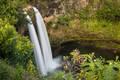 Wailua Falls print