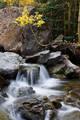 Bear Creek in the fall print
