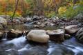 Fall on Richland Creek print