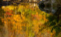 Abstract reflections on Richland Creek print