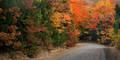 Fall colors near Chester Arkansas print