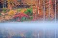 Fog on the Pond print