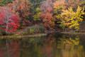 Reflections at Cove Lake print