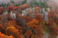 Rugged Bluffs and Fall Colors print