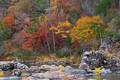 Fall on the Cossatot River print