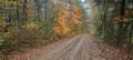 falling Water Creek Road print