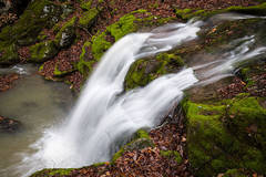 Twin Falls and Moss