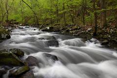 Cedar Creek Cascasde