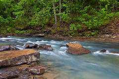 arkansas, spring, streams