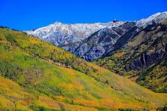 Fall color near Silverton, Colorado