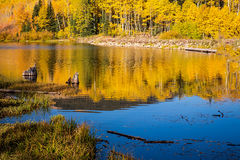 Woods Lake Reflection