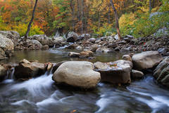 Fall on Richland Creek