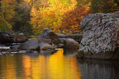 Reflections and Rocks on Richland Creek