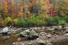 Fall Richland Creek