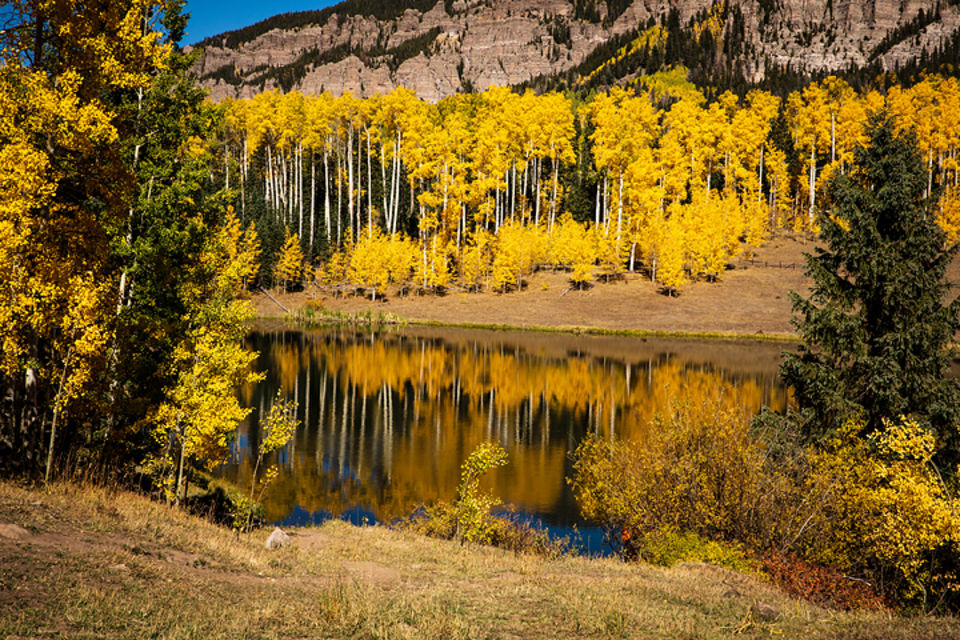 fall, Colorado