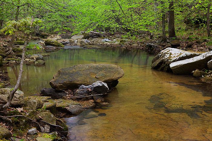 Arkansas, Spring, Green, streams, photo