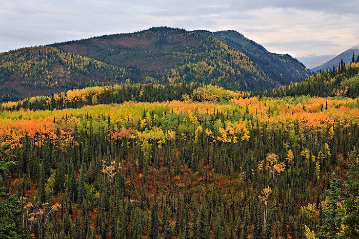 Alaska, fall, photo