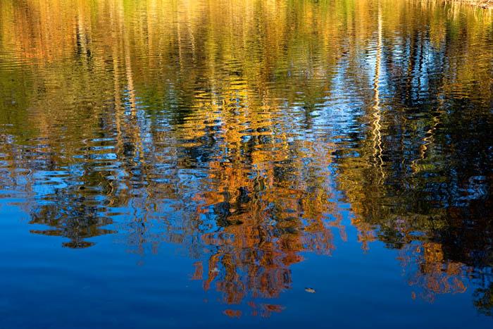 arkansas, fall, streams, photo