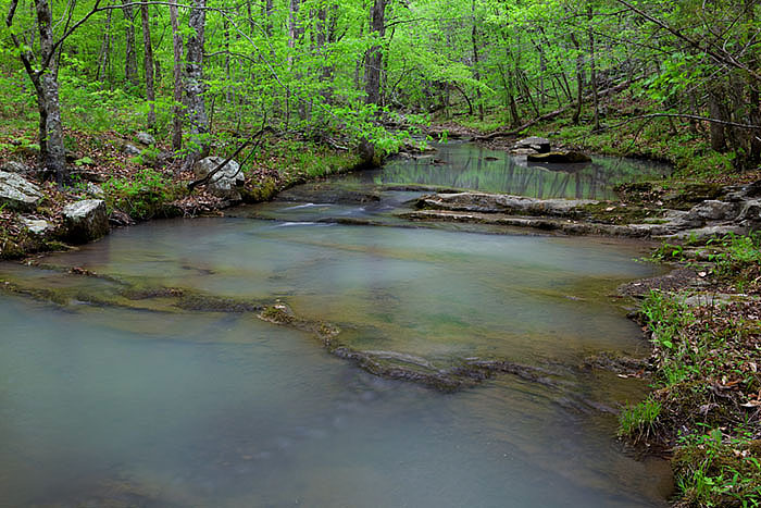 The view looking upstream from the Ozark Highlands trailhead at Lick Branch