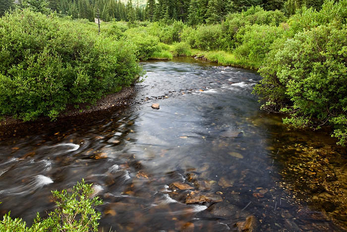 The headwaters of the Middle Fork of the South Platte begin in the Mosquito Range near Wheeler Lake and flow into Montgomery...