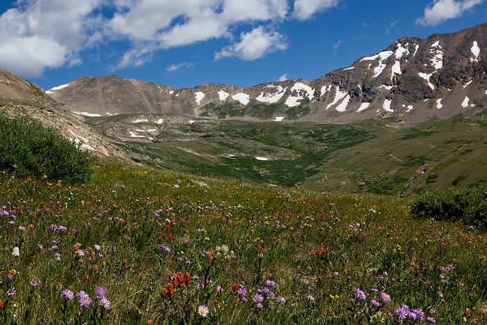 The wildflowers were abundant due to a good snowpack and very plentiful summer rains. The mountians were as lush as I have seen...