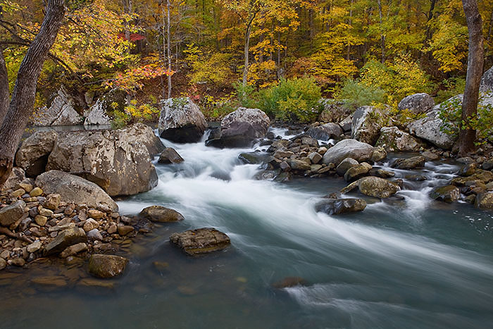 Rapids and fall color on Richland Creek.