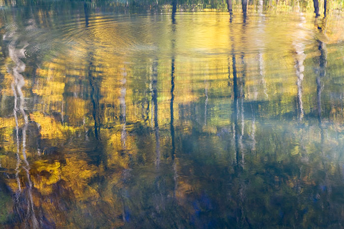 Abstract reflections on Richland Creek