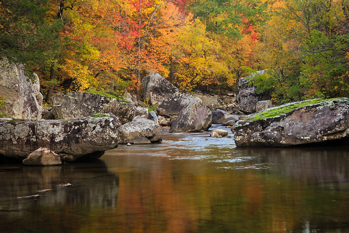 Rocks and Fall Colors