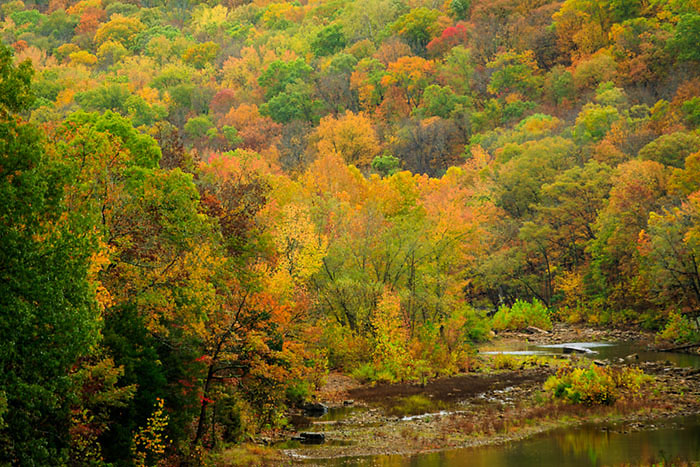 Fall colors Lee Creek