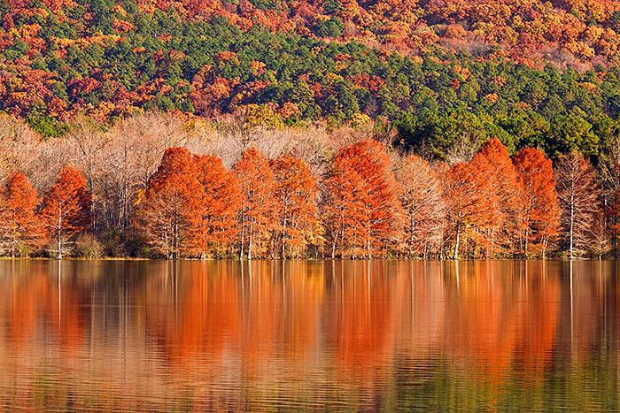 Cove Lake, Mount Magazine State Park