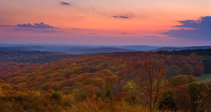 Sunset along Kimes Mountain Road, Ozark National Forest, Arkansas