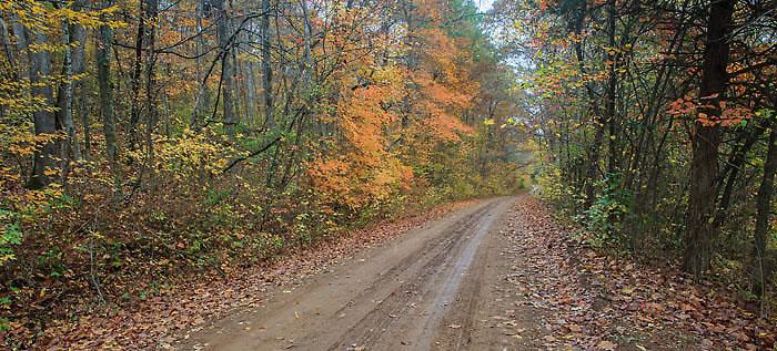 falling Water Creek Road