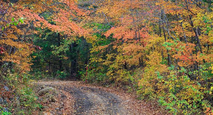 Richland Creek Road